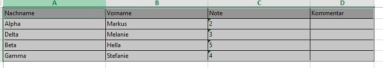 Excel-Tabelle zu importierender Schüler